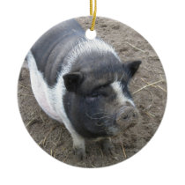 Pot Bellied Pig Ceramic Ornament