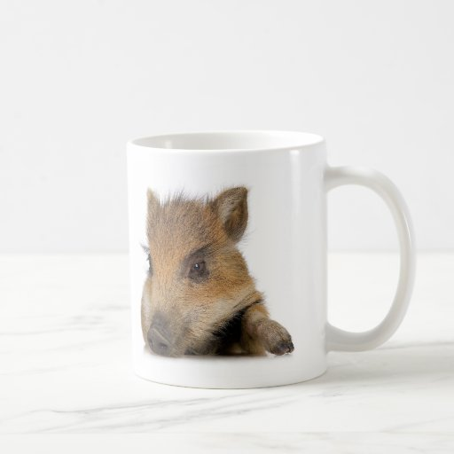 Pot-Bellied Pig Classic White Coffee Mug