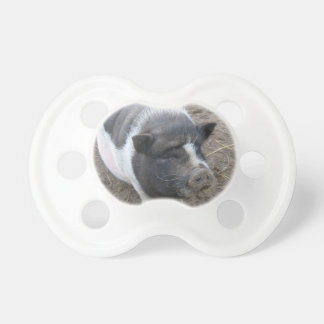 Pot Bellied Pig Pacifier