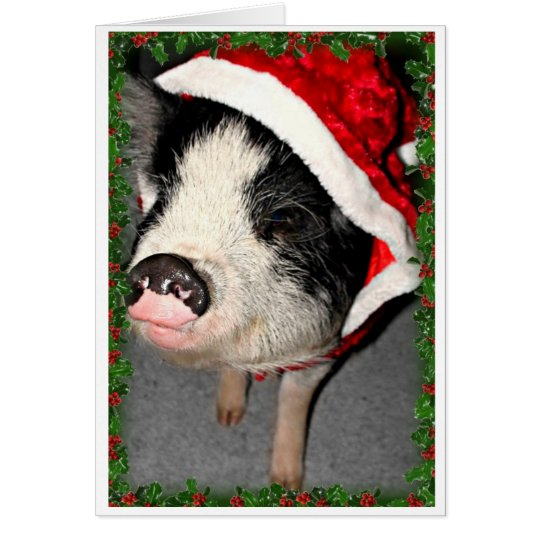 Pot Belly Pig Christmas Card