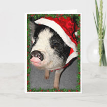 Pot Belly Pig Christmas Holiday Card