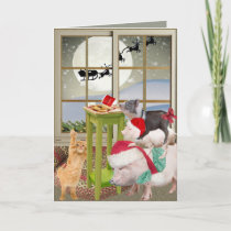 Pot Belly Pig Christmas Wish Cards