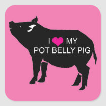 Pot Belly Pig Square Stickers