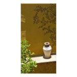 Pot, Fresco and Lemon Tree San Miguel de Allende Custom Photo Card