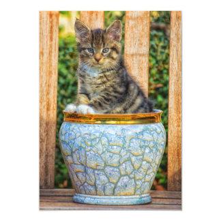 Pot Of Baby Kitten Card