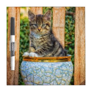 Pot Of Baby Kitten Dry Erase Board