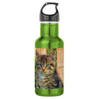 Pot Of Baby Kitten 18oz Water Bottle