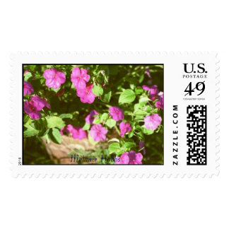 Pot of flowers stamps