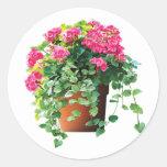 Pot of Pink Geraniums Classic Round Sticker
