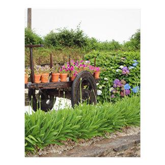Pot plants, cart and hydrangeas, Arzua, Spain Letterhead