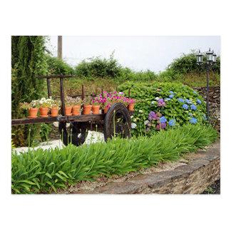 Pot plants, cart and hydrangeas, Arzua, Spain Postcard