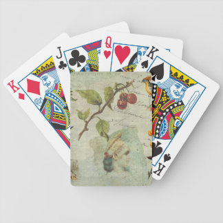 Pot-Pourri Bicycle Playing Cards