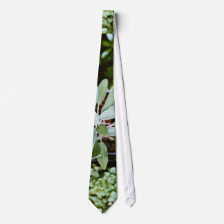 Pot Themed, Various Types Of Plants Grow From Pots Neck Tie
