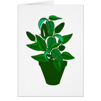 Pot with green themed plant card