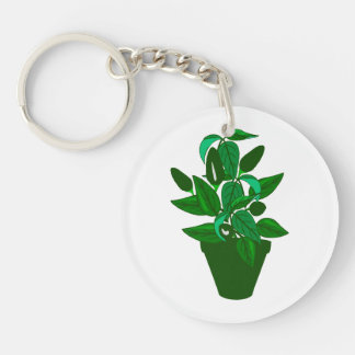 Pot with green themed plant keychain