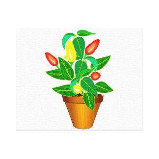 Pot with red and yellow pepper plant canvas print