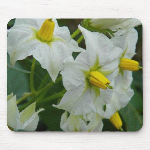 Potato Blossom Mouse Pad