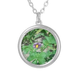 Potato blossom silver plated necklace
