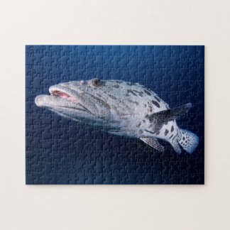 Potato Cod at the Cod Hole Jigsaw Puzzle