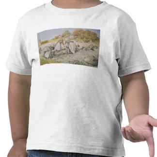 Potatoes de excavación, 1905 camisetas