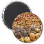 Potatoes of Peru Fridge Magnets