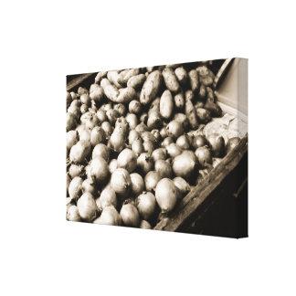 Potatoes & Onions Canvas Print