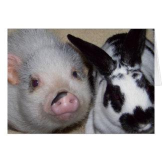 Potbelly Pig & Friend Card