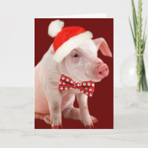 Potbelly Pig Oink Card