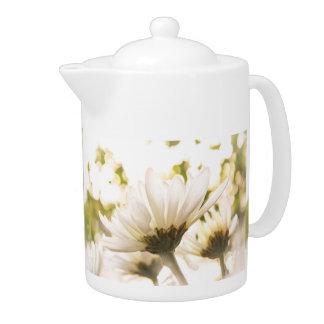 Pote blanco del té de la gloria del crisantemo