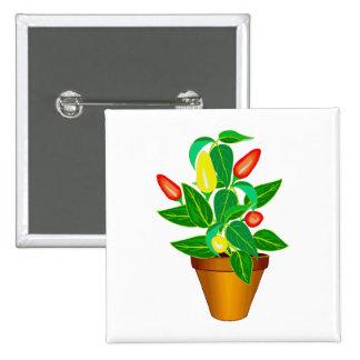Pote con la planta roja y amarilla de la pimienta pin