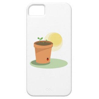 Pote de la planta iPhone 5 carcasas