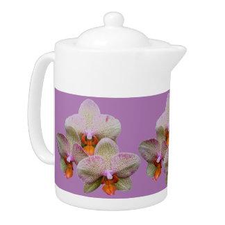 Pote del té - orquídea