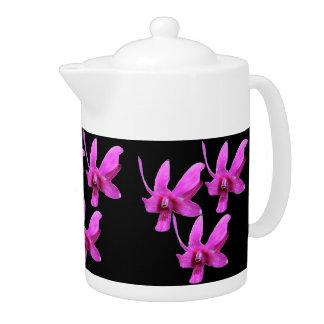 Pote del té - orquídea de Cooktown