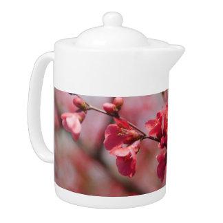 Pote rojo del té del membrillo