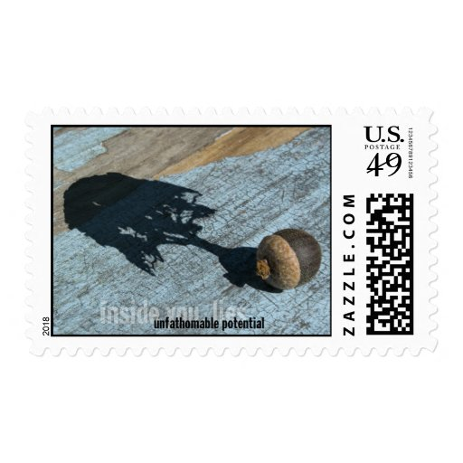 """Potential"" Postcard Postage"