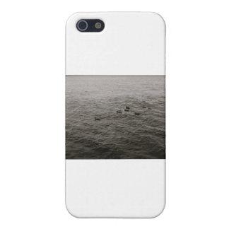 Potomac river ducks iPhone 5 covers