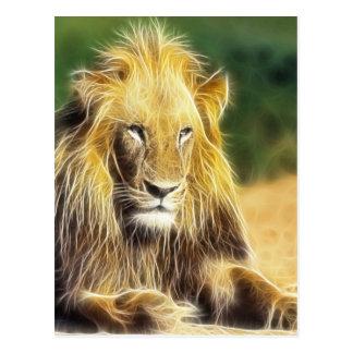 Potrait lion postcard
