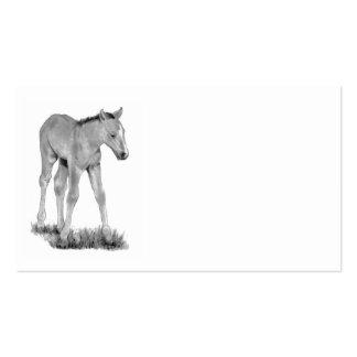 Potro caballo Arte del lápiz de la tarjeta de vi