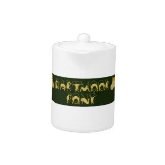 Potro de Dartmoor escrito en potros
