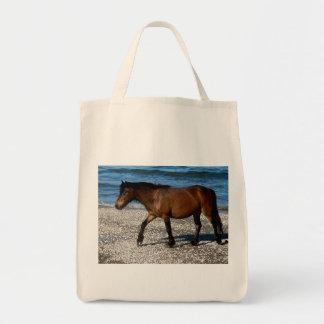 Potro de Dartmoor que camina en la playa del sur a Bolsas