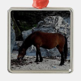 Potro de Dartmoor que se lame en la playa en Devon Adorno Navideño Cuadrado De Metal