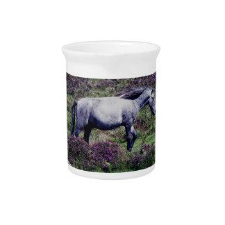 Potro de Dartmoor que vaga por en el brezo Jarron