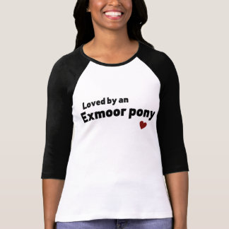Potro de Exmoor Playera