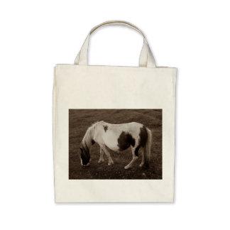 Potro de la colina de Dartmoor que pasta Sepia Bolsas