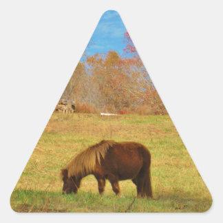 Potro de la miniatura de Brown Pegatina Triangular