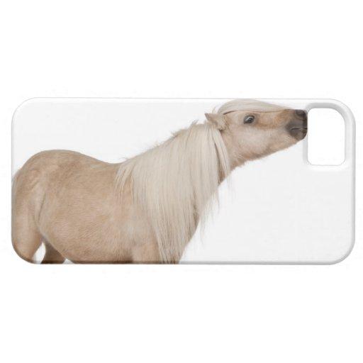 Potro de Shetland del Palomino - caballus del Funda Para iPhone SE/5/5s