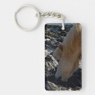 Potro de Shetland del sur de la playa de Devon que Llavero Rectangular Acrílico A Una Cara