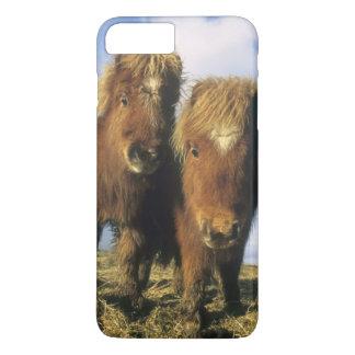 Potro de Shetland, Islas Shetland del continente, Funda iPhone 7 Plus