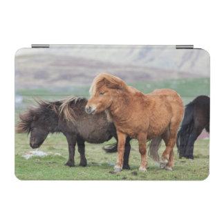 Potro de Shetland Islas Shetland Escocia 2 Cubierta De iPad Mini