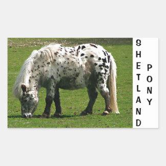 Potro de Shetland Pegatina Rectangular